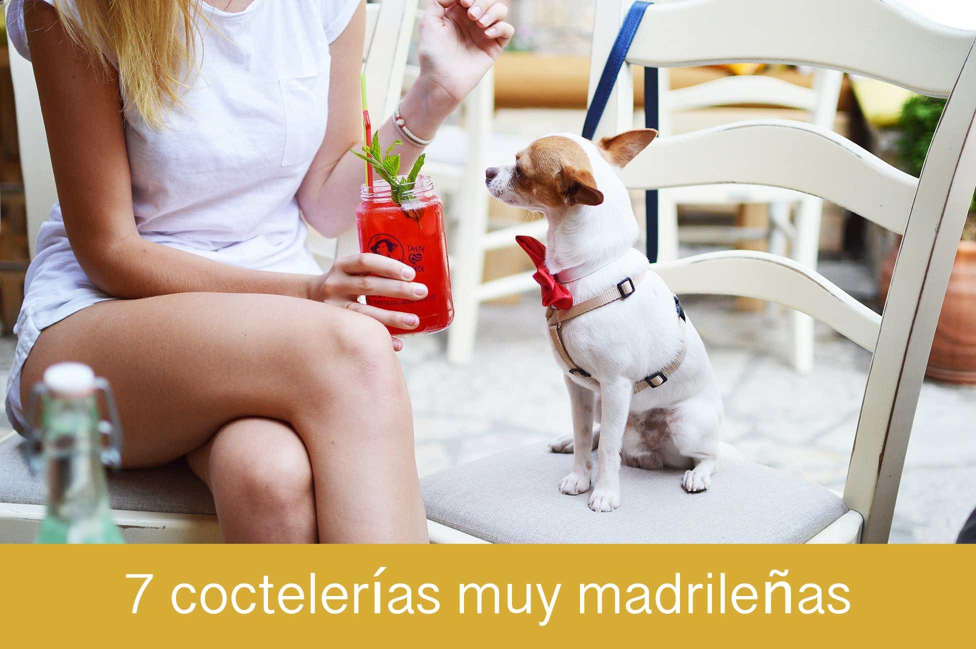 7 coctelerías muy madrileñas